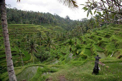La belle nature d'indonésie